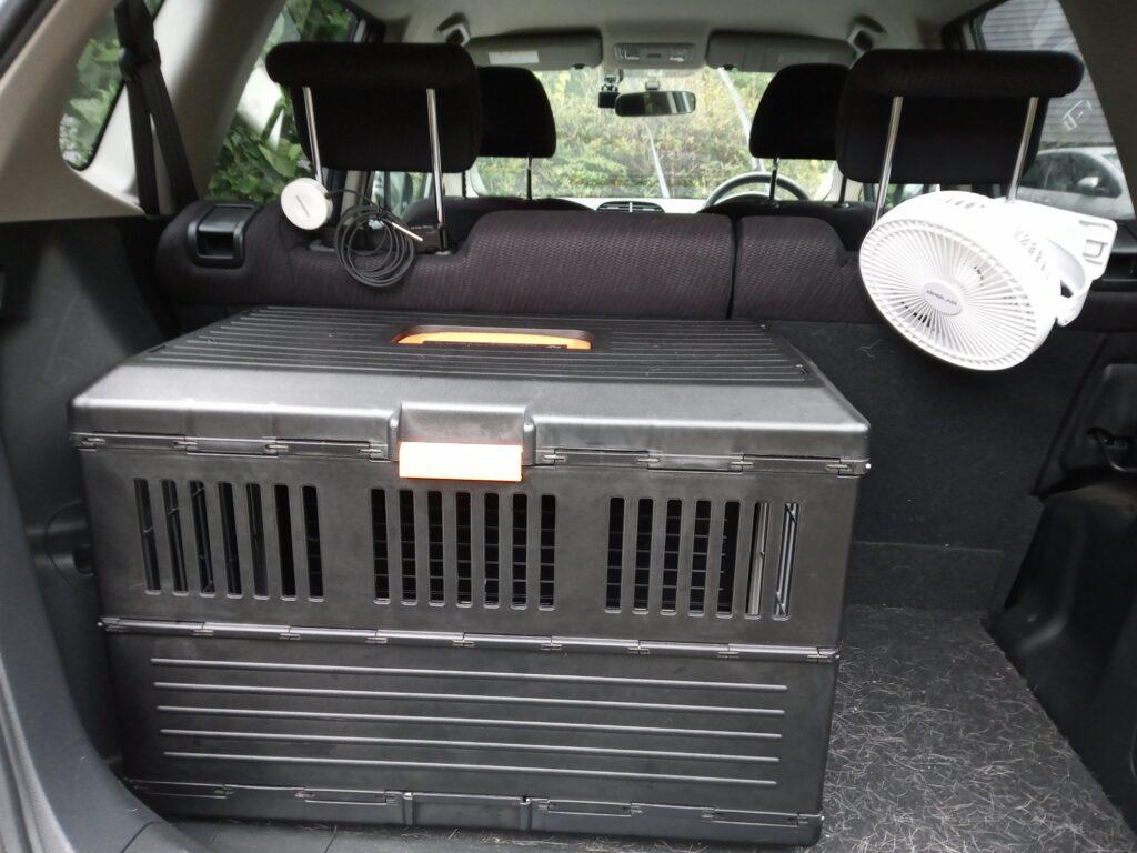 車のトランクにケージを配置
